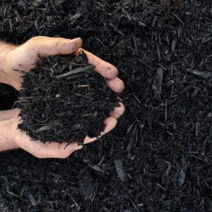 Canberra Organic Mulch - Lo Pilato Bros Landscaping Supplies Canberra