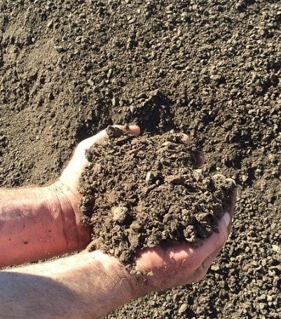 Cow Manure - Lo Pilato Bros Landscaping Supplies Canberra