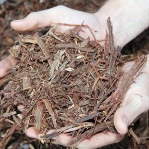 Forest Litter Mulch - Lo Pilato Bros Landscaping Supplies Canberra