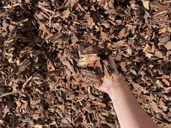 Tan Bark 14mm Lo Pilato Bros Landscaping Supplies Canberra